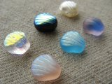 Glass Shell 8mm Beads 4個入り