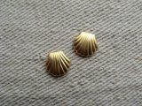 BRASS Small Shell (NO RING) 2個入り