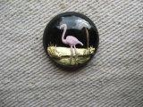 """Glass """"Flamingo"""" Intaglio Cabochon"""