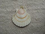 Decoupage SHELL/B