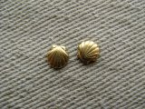 BRASS Tiny Shell (NO RING) 2個入り